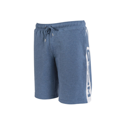 Product overview - TEAM SWEAT BERMUDA (MAN) blue/green