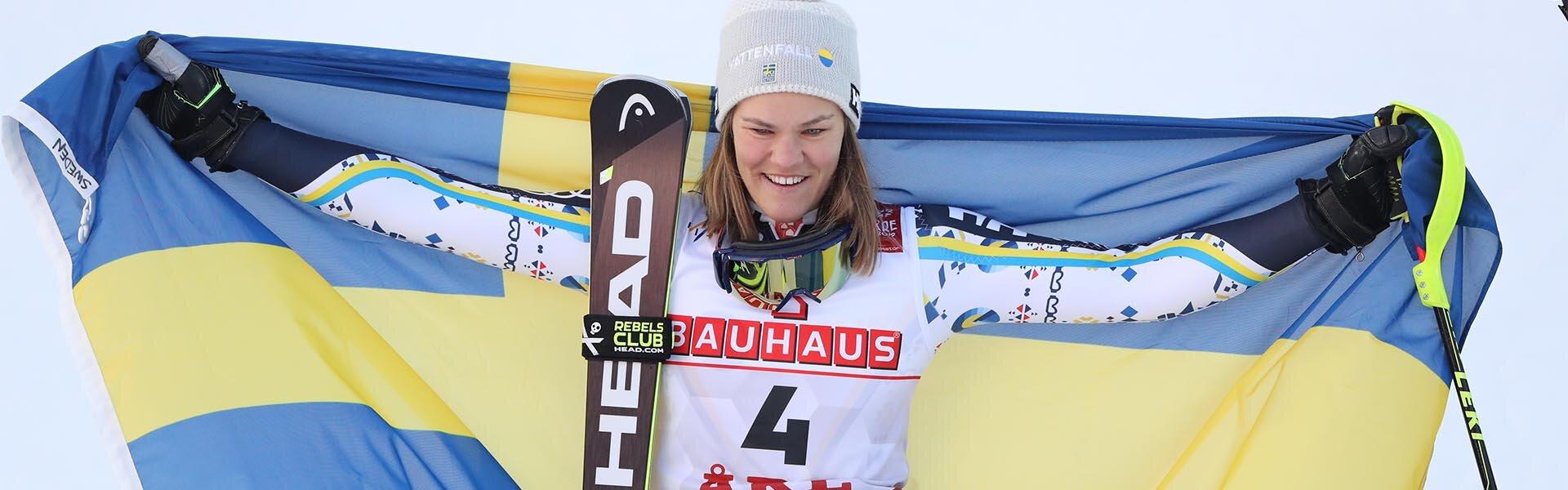 detail-1 Anna Swenn-Larsson