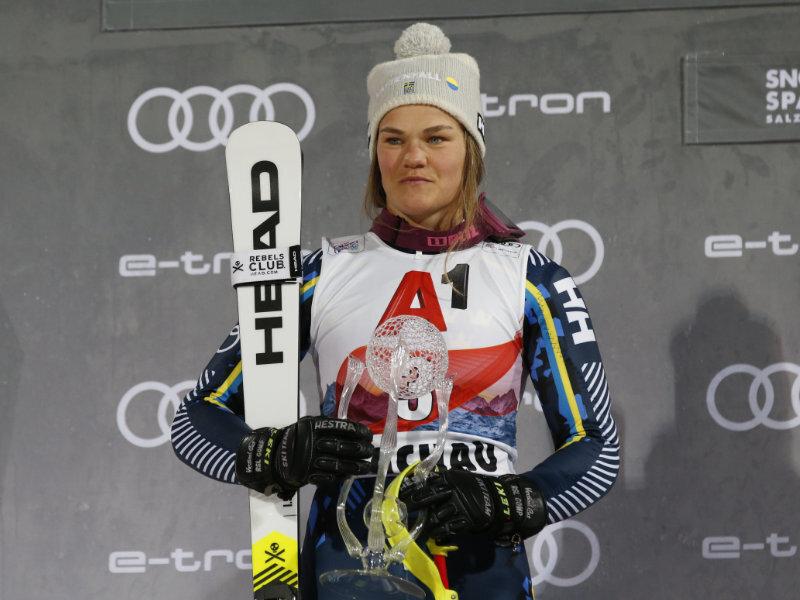 overview Anna Swenn-Larsson